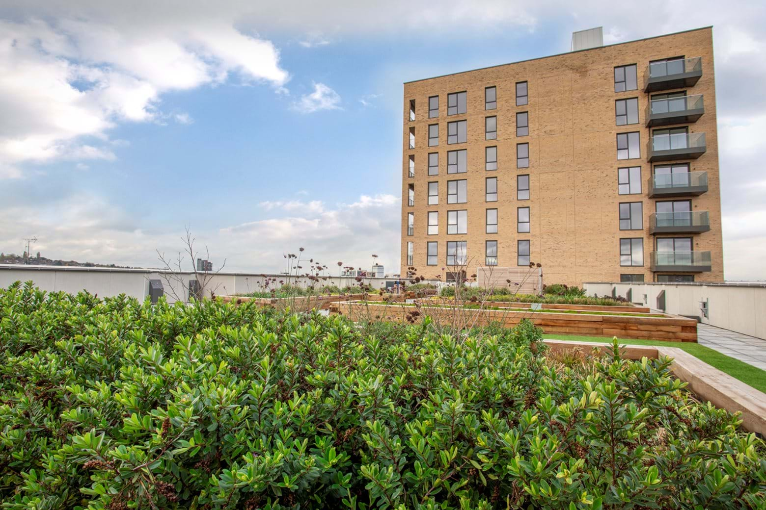 Colindale Gardens - Rent to Buy communal roof-top gardens